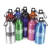 POLLOCK - 550ml Sports Bottle